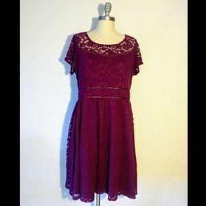 Torrid burgundy lace dress